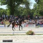 Во Франции состоится международный турнир по выездке CDIO Compiègne